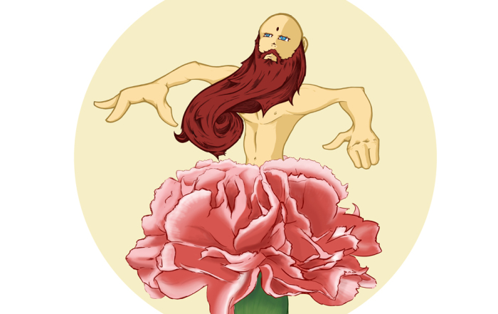 Bearded Carnation